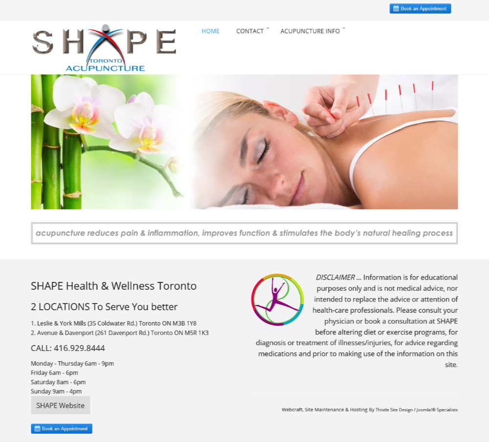 SHAPE Toronto Acupuncture